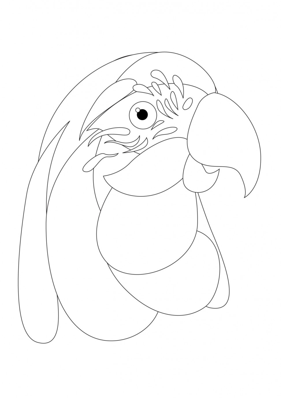MACAW colouring sheet